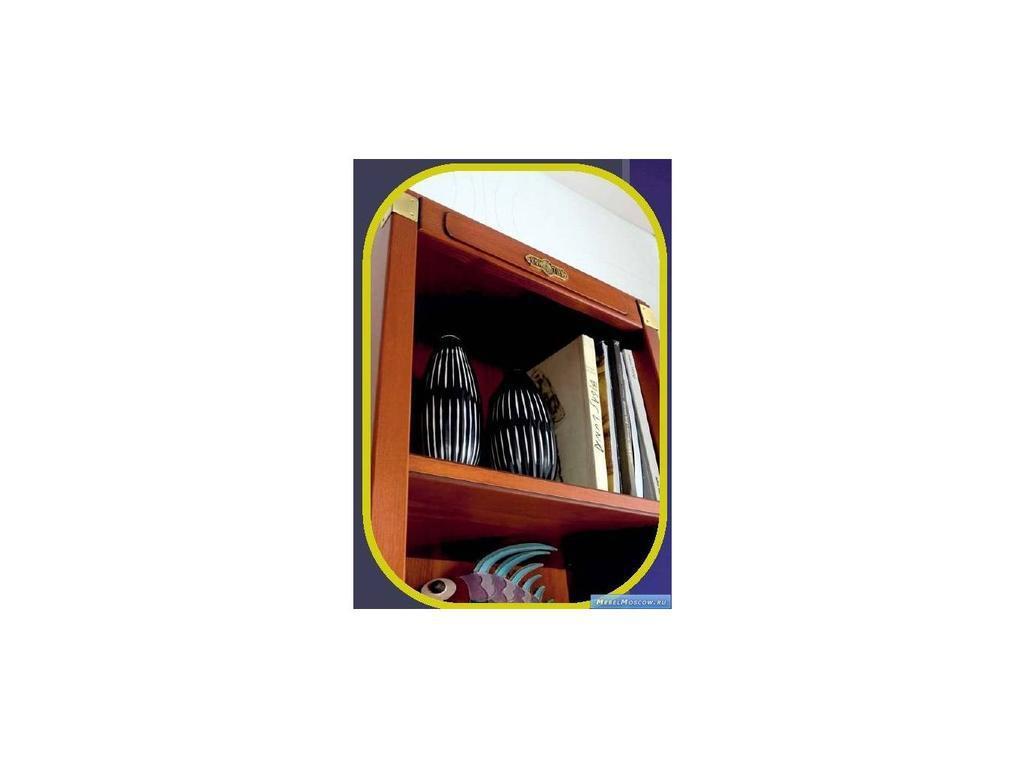 Artemader: Camarote: шкаф книжный  (орех)
