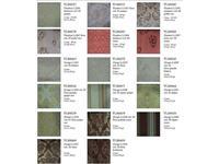 Morello Gianpaolo: TLI: образцы тканей