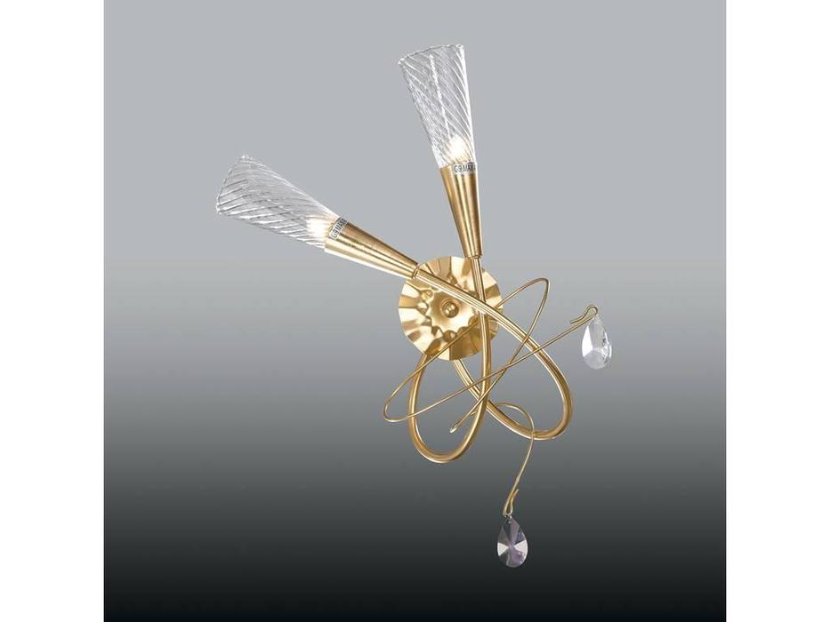 Lightstar: Aereo: бра  2х40W G9 (золото матовое)