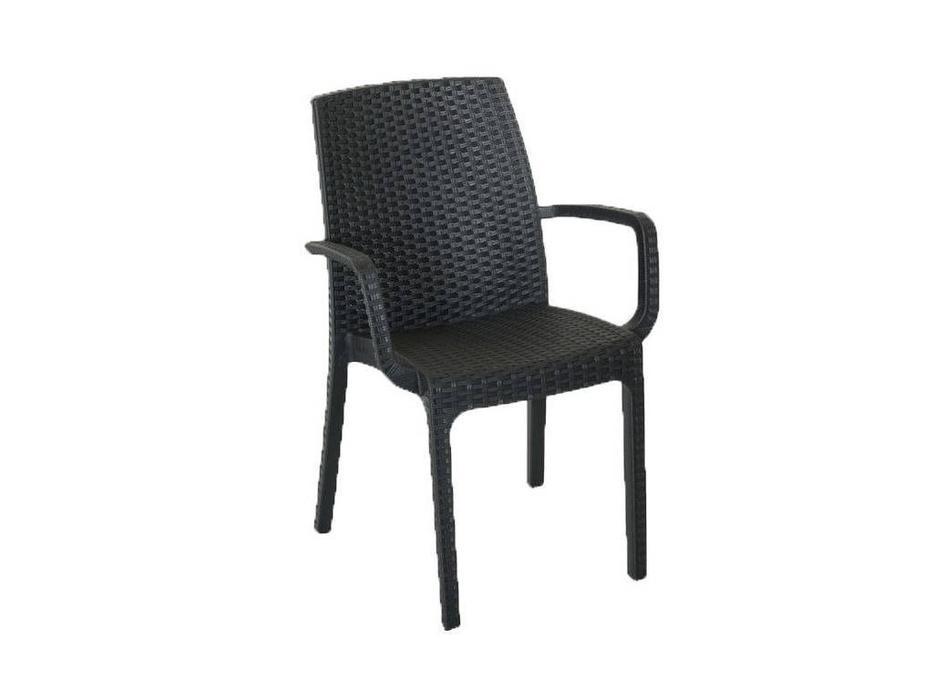 Rattan: Indiana: стул с подлокотниками  (венге)
